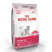 [Gato] Royal Canin kitten 36