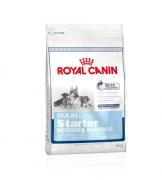 [Perro] Royal Canin Maxi Starter