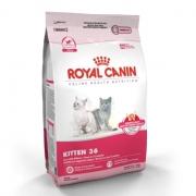 [Gato] Royal Canin kitten 36